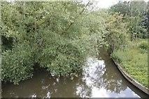 SU5894 : The River Thame by Bill Nicholls