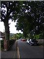 TG1906 : Gurney Lane, Cringleford by Adrian Cable