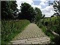 SD7816 : Holcombe Old Road by Philip Platt