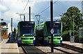 TQ3365 : Stadler Variobahn Trams at Sandilands by Peter Trimming