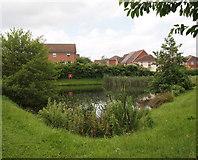 SK5319 : Loughborough, Leics by David Hallam-Jones