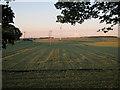 TL5553 : New wind turbines by Hugh Venables