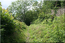 SX4268 : Calstock: public footpath by Martin Bodman