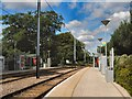 TQ3364 : Lloyd Park Tram Stop by Paul Gillett