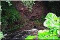 NT5618 : Upper Old Red sandstone exposure, Denholm Dean by Jim Barton