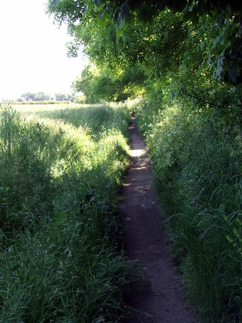 Footpath towards Backworth