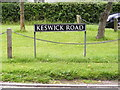 TG1905 : Keswick Road sign by Adrian Cable