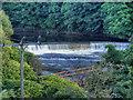 SD7706 : River Irwell Weir by David Dixon
