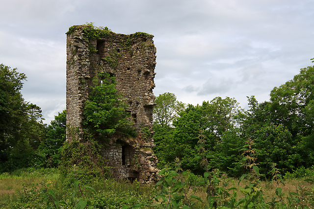 Castles of Leinster: Kilhile, Wexford