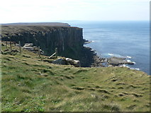 ND2076 : The cliffs at Dunnet Head by Liz Gray