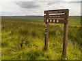 SD6619 : Darwen Moor and Winter Hill by David Dixon