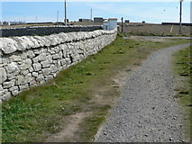 ND2076 : Dry Stane Dyke & path by Liz Gray