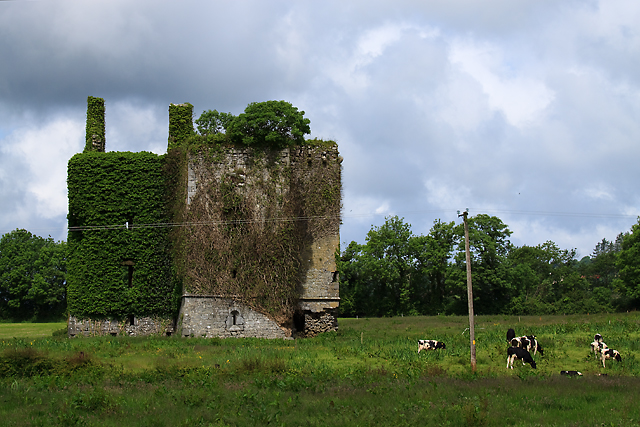 Castles of Munster: Kilmurry, Kerry (1)