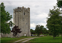 S1149 : Castles of Munster: Ballytarsna, Tipperary by Mike Searle
