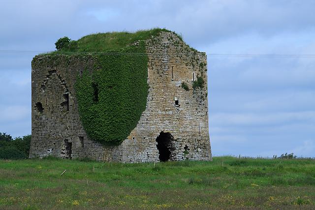 Castles of Munster: Moyneard, Tipperary