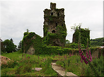 W9399 : Castles of Munster: Mocollop, Waterford (2) by Mike Searle