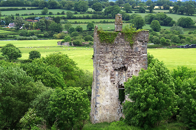 Castles of Munster: Coolnamuck, Waterford