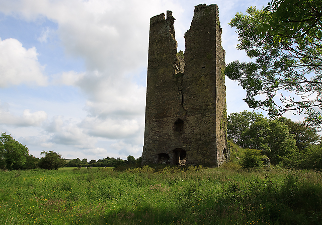 Castles of Munster: Clonea, Waterford