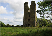 S3813 : Castles of Munster: Clonea, Waterford (1) by Mike Searle