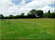 TQ8115 : Parish Field, home of Westfield FC (Sussex) by nick macneill