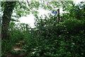 SX8150 : Footpath / bridleway junction by N Chadwick