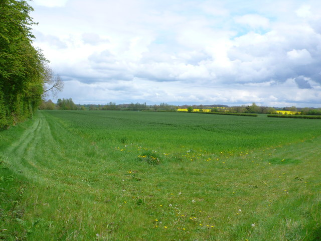 Field near River Itchen