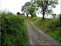 H5116 : Road at Lattacapple by Kenneth  Allen