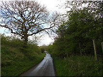 NZ3332 : Road leading past Bishop Middleham Quarry by Robert Graham
