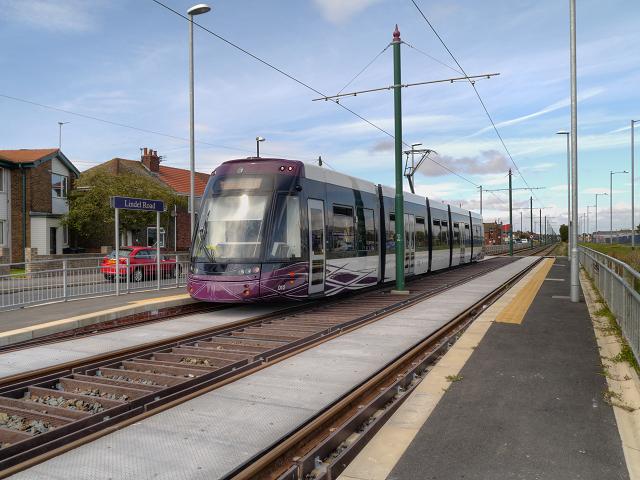 Tram at Lindel Road