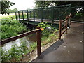 TQ0566 : Footbridge at Chertsey by Colin Smith