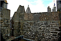 R4560 : Bunratty Castle - Top of Southeast Tower by Joseph Mischyshyn