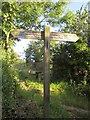 SX8854 : Footpath sign, Higher Greenway by Derek Harper
