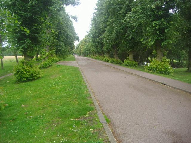 Private drive through Trent Park