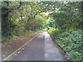 SU4711 : Narrow section of Botley Road by David Martin