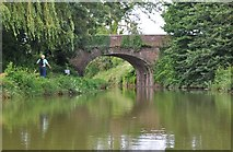 SS9712 : Tiverton : Grand Western Canal & Tidcombe Bridge by Lewis Clarke
