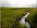 SD6617 : Moorland Stream by David Dixon