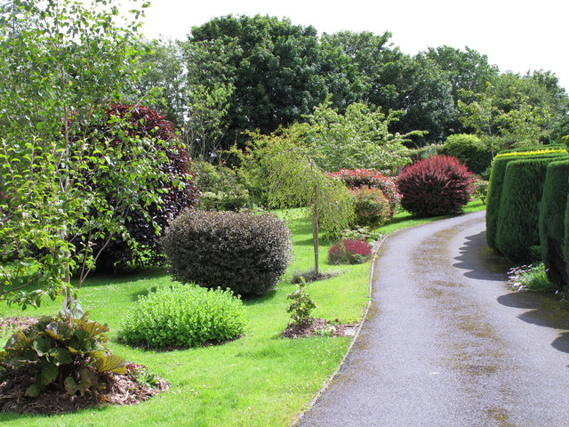 Private drive with ornamental shrubs and trees