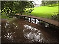 SX8963 : Flooded meadow, Cockington by Derek Harper