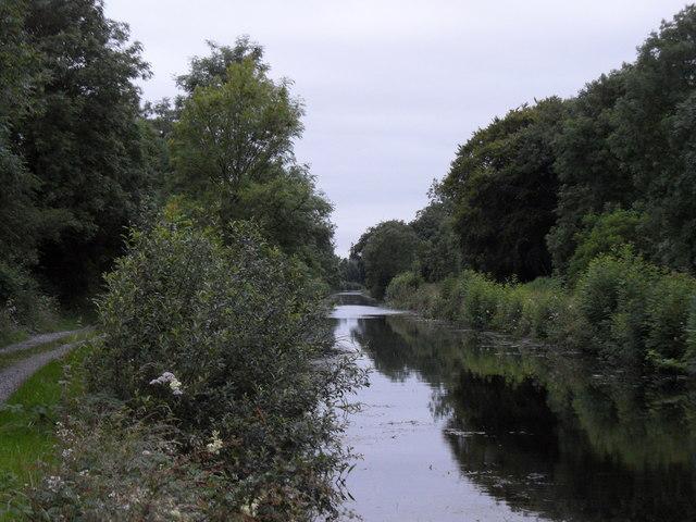 Grand Canal in Castlebarnagh Big, near Daingean, Co. Offaly