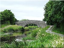 N3125 : Srah bridge on the Grand Canal, west of Tullamore, Co. Offaly by JP