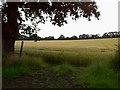 TM4375 : Footpath from Low Farm to Laurel Farm by Hugh Craddock