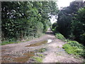 ST0841 : Track to Long Street, Williton by Roger Cornfoot