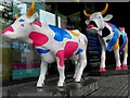 "H4572 : ""Cow Parade"", High Street, Omagh by Kenneth  Allen"