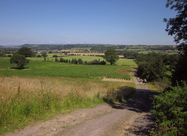 Track below Kings Hill