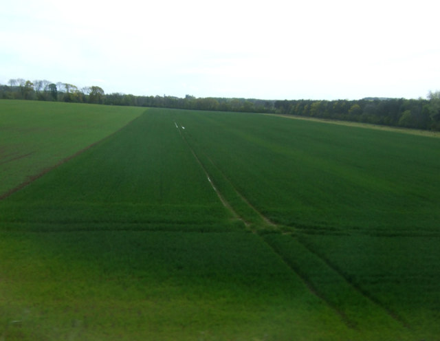 Crop field, Fortoun Bank