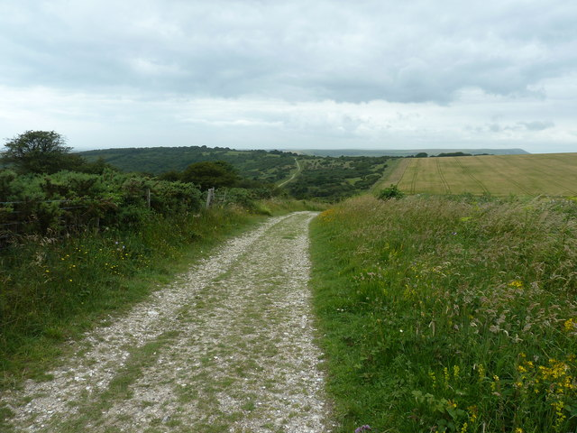 View along bridleway 6d in the parish of Cuckmere Valley