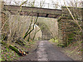 NY7308 : Old railway route with disused bridge by Trevor Littlewood