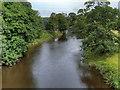 SD7434 : River Calder by David Dixon