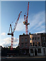 TQ3877 : Cranes on the university site by Stephen Craven