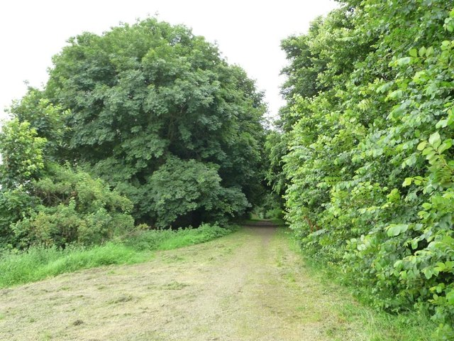 Path along the former Leeds - Wetherby railway line